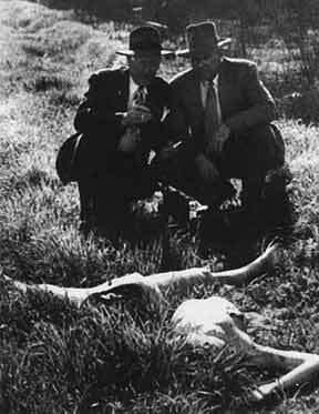 убийство элизабет шорт фото